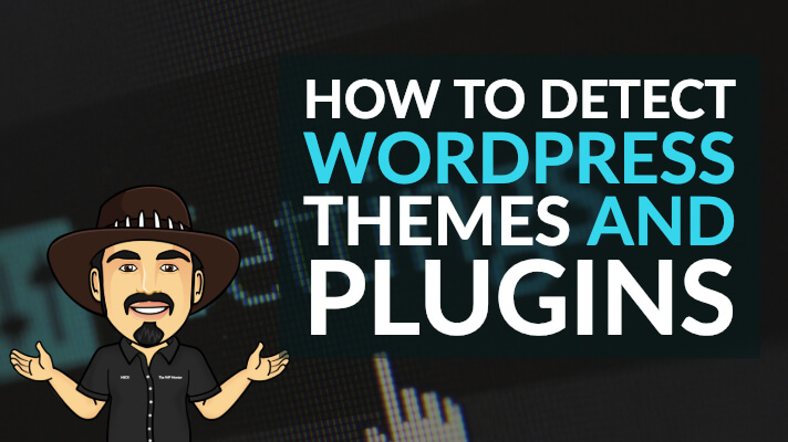 How to detect WordPress Themes and Plugins